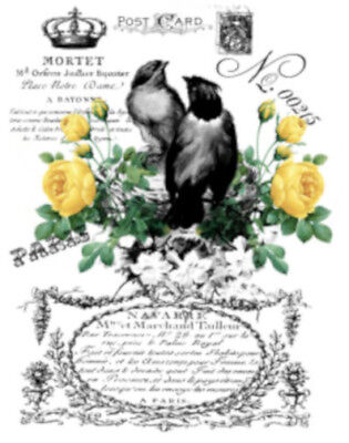 Vintage Image French Ad Birds Yellow Roses Furniture Transfers Decals MIS653