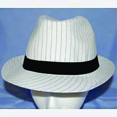 ec84715637a Roaring 20's White Pinstripe Fedora Hat Flappers Gangsters Costume  Accessory H1
