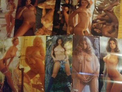 Playboy Magazine 1975 Centerfold Collection 11 Pin-ups! Lot 12 Missing November