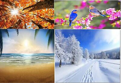 4 Seasons digital image and positive ratings
