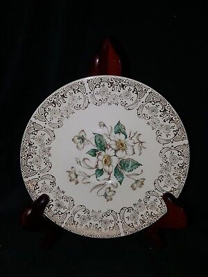 Vintage Knowles Ivory Floral Saucer White Flower w Gold Filigree Edge 52-7 USED