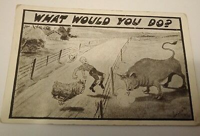 "Antique postcard ""What would you do"" Very old"