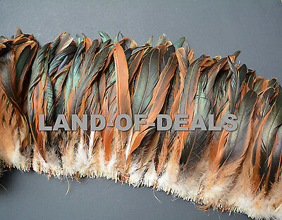 Rooster tail feathers iridescent brown Half Bronze Coque feathers bulk