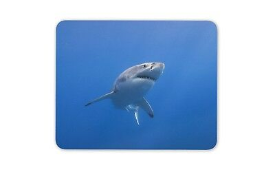Great White Shark Mouse Mat Pad - Surf Student Teenager Dad Gift Computer #14210