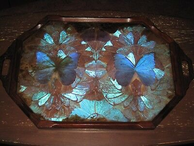 Vintage Wood Iridescent Blue / Purple Butterflies Serving Tray -- Free Shipping!