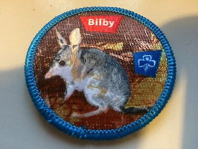 Girl Guides / Scouts Bilby
