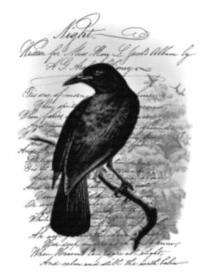 Vintage Image French Bird Raven Crow Night Poem Furniture Transfer Decals BIR855