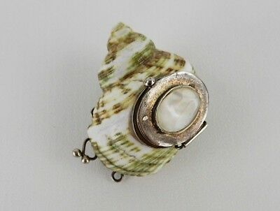 Antique Chinese Mother of Pearl and Conch Shell Sterling Snuff Bottle Circa 1900