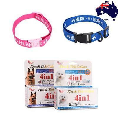 Pet Cat Kitten Adjustable Pet Collar Neck Strap Anti Flea Mite Acari Tick Remedy