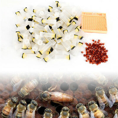 441pcs Beekeeping Queen Rearing Cupkit Plastic Box Cage System Cell Cup Kit USA