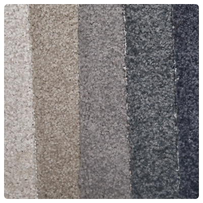 Solution Dyed Twist Pile 32oz - Online Carpet Sale!