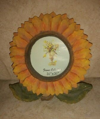 Sunflower picture frame by frame collection