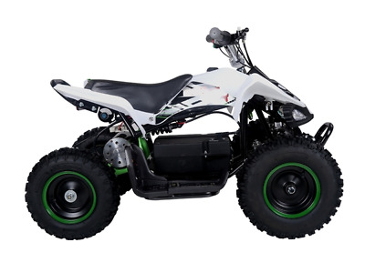 Kids Mini Quad Dirt Motor Bike Electric Battery Powered 36V White