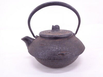 3699677: Japanese Iron Ware Nanbu Tekki Tea Pot / Artisan Work