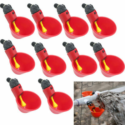 10 Pack Poultry Water Drinking Cups- Chicken Hen Plastic Automatic Drinker USA