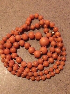 "Victorian Natural Salmon Coral Necklace- Antique Salmon Coral Bead 23"" 10K Clasp"