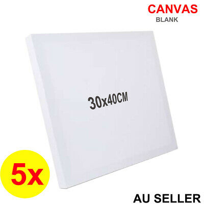 5x Blank Painting Canvas Artist Stretched Canvases White Art Oil Acrylic Paint