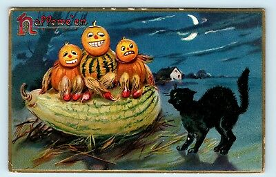 RARE c1908 TUCK HALLOWEEN POSTCARD - JOL PEOPLE & SCARDY BLACK CAT - M3