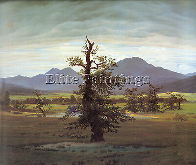 ART PRINT POSTER PAINTING WATERCOLOUR LANDSCAPE SOLITARY TREE VALLEY LFMP1147