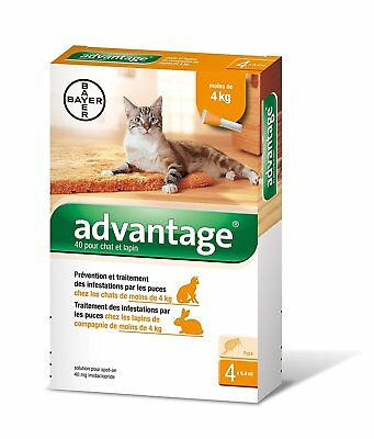 ADVANTAGE 40 (0.40 ml) x 4 pipettes  Ticks and flea treatment Cat - 4 kg