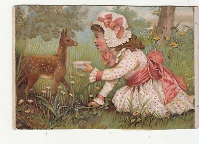 Girl in White Pink Dress Feeding Fawn Deer No Advertising Vict Card c1880s