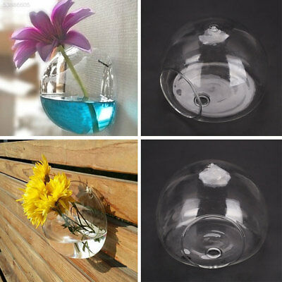 561D Semicircular Wall Hanging Glass Plant Flower Vase Hydroponic Container Home