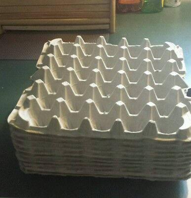 30 count egg cartons paper trays flats,crafts 12 pieces