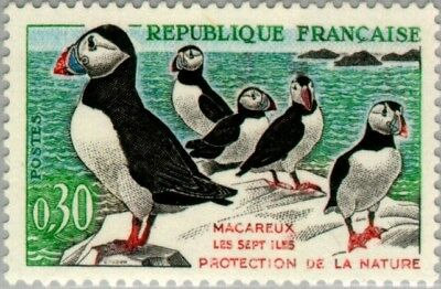 EBS France 1960 Bird Protection - Puffins Macareux MNH** (FR1326)