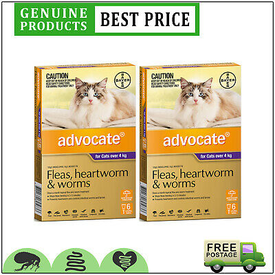 ADVOCATE for Cats PURPLE for Cat Over 4 Kg 12 Doses + 4 BONUS Doses