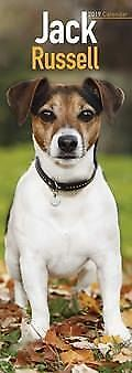 Jack Russell Official 2019 Slim Wall Calendar New & Sealed