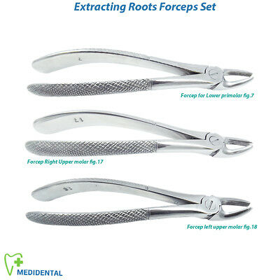 Chirurgical Extraction de Dent Racines Forceps Premolar Canin Instruments