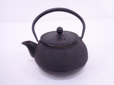 3752730: Japanese Nanbu Tekki Iron Kettle