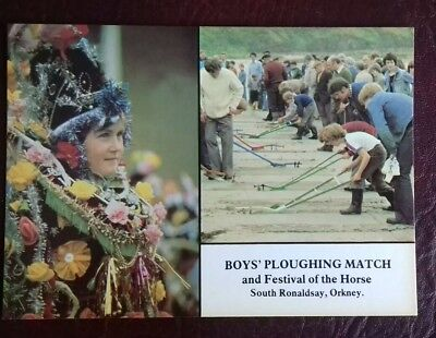 Orkney Postcard Boys Ploughing Match South Ronaldsay Festival of the Horse