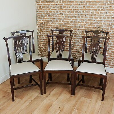 Set of 6 Antique Edwardian Hepplewhite Solid Mahogany Dining Chairs C1890-1900