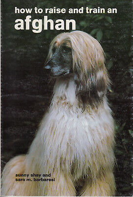 HOW TO RAISE AND TRAIN AN AFGHAN Dog book by Shay & Barbaresi SC 1983