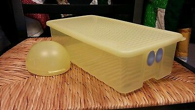 Tupperware Fridge Smart 2L & Forget Me Not Containers Sunlight Yellow EUC