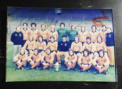 1976 Wolves Division 2 Winners Press Photo? With Trophy 1976-77