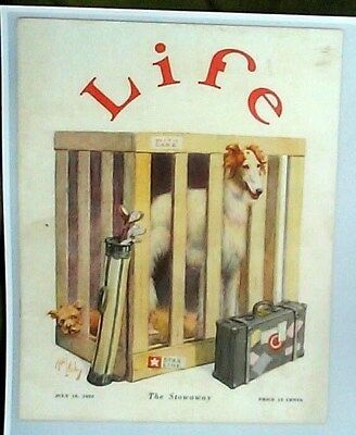 Borzoi Russian Wolfhound Dog Cover Life Reprint 1925 Golf The Stowaway Puppy