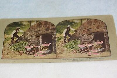"""Rare Black Americana Color Stereoscope View Card """"Dem Brats Done Gone and Stole"""""""
