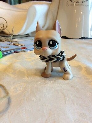 lps great dane #1647 with loom band collar