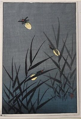 Ohara Shoson -Title not known- Fireflies    *Purchased in Japan 1947* Koban size