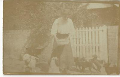 Edwardian Lady Feeding Her Dogs - English Bull Terrier Vintage Real Photo Pc