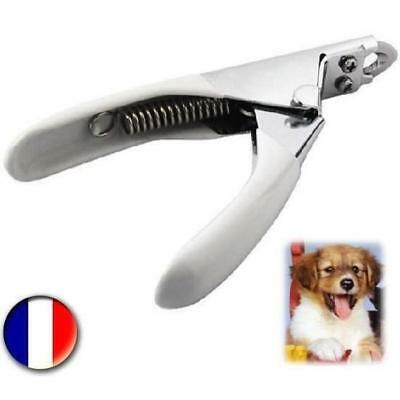 Pince Guillotine Griffe Coupe-Ongles Ciseaux Pour Chiens