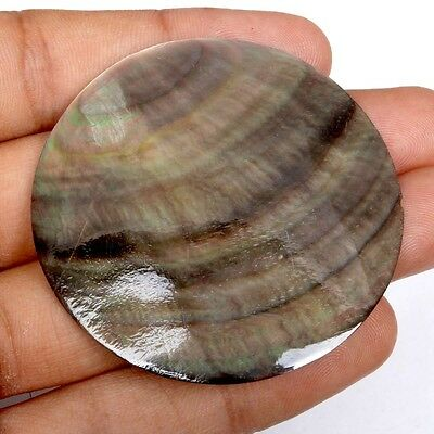 Nice Quality 52x52 mm ABALONE Round Loose Gemstone 58.00 Carats S-33543
