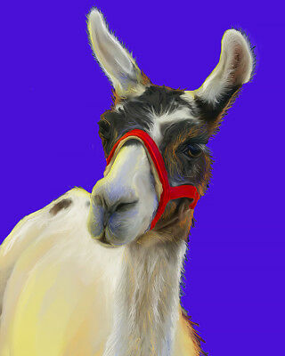 LLAMA on Blue Signed Art PRINT of Digital Oil Painting by VERN Livestock Animals