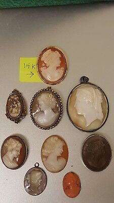 Vintage Lot ofBeautiful Shell Lava Corral Cameos 14k, 925 Gold Fill Loose AS IS