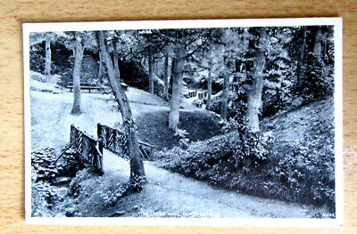 UK VINTAGE TOPO POSTCARD THE LADIES WALK NORTH BERWICK  pu VERY GOOD