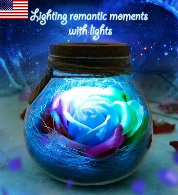 Bloom LED Rose Bottle Lamp Flower Light Remote Control Romantic Night Light