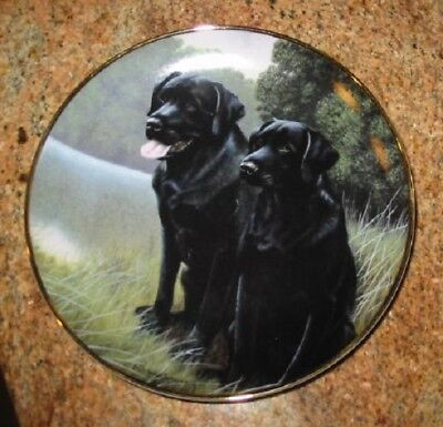 "Franklin Mint Collector Plate -Black Lab Sporting Companions 8""-Labrador Dog"