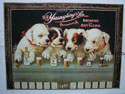 Yuengling Lager Beer Puppy Dogs At Bar Poster / Sign / Banner (New) Nice